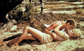 ...und immer lockt das Weib mit Brigitte Bardot und Christian Marquand - Bild 6