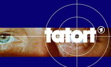 Tatort: Blechschaden - Bild 1