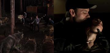 Wölfe mit und ohne Pelz: das Twilight-Werwolf-Rudel sowie Jack Hyde in Fifty Shades 3
