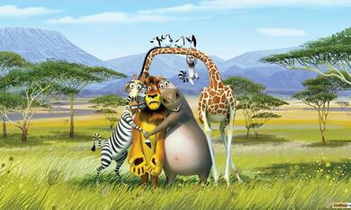 Madagascar 2 - Bild 2