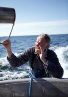 Der Kommissar und das Meer: Niemand hat Schuld