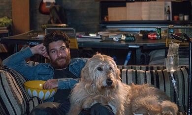 Dog Days mit Adam Pally - Bild 5