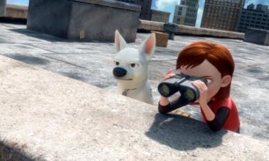 Bolt - Ein Hund für alle Fälle - Bild 11