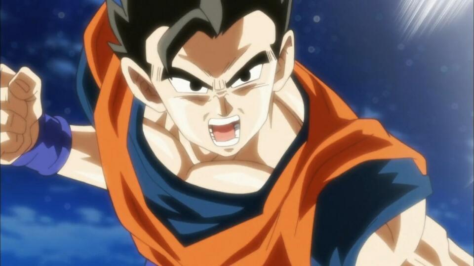 Dragon Ball Super Meine Meinung Zum Kampf Gohan Vs Goku Bild 1