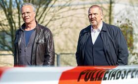 Tatort: Narben mit Dietmar Bär - Bild 100