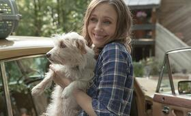 Boundaries mit Vera Farmiga - Bild 6