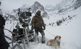 Zwischen zwei Leben - The Mountain Between Us mit Idris Elba - Bild 26