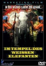 Im Tempel des weißen Elefanten - Poster