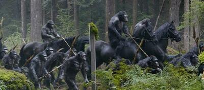 Affen reiten auf Pferden - beängstigend.