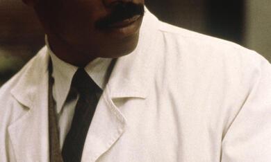 Dr. Dolittle mit Eddie Murphy - Bild 9