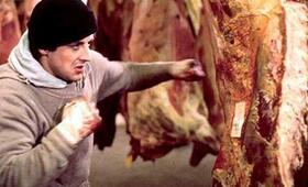 Rocky mit Sylvester Stallone - Bild 71