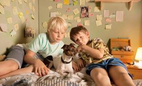 Rico, Oskar und das Herzgebreche mit Juri Winkler und Anton Petzold - Bild 17
