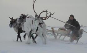 Die Hüter der Tundra - Bild 7