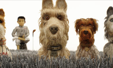 Isle of Dogs - Ataris Reise - Bild 1
