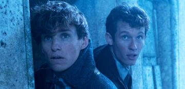 Phantastische Tierwesen 2: Newt liebt seinen Bruder, auch wenn er ihn selten umarmt
