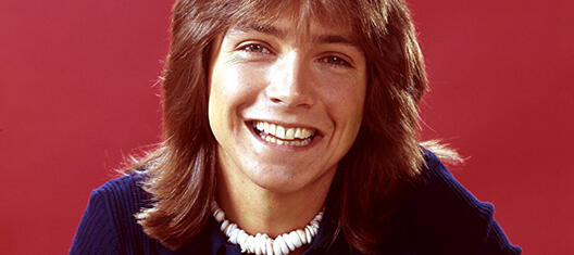 The partridge familiy david cassidy