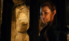 Der Hobbit: Smaugs Einöde mit Evangeline Lilly - Bild 11
