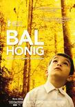 Bal - Honig