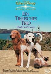 Ein Tierisches Trio