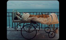 Scarred Hearts - Vernarbte Herzen mit Lucian Teodor Rus - Bild 1