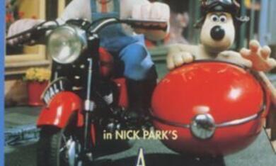 Wallace & Gromit unter Schafen - Bild 1
