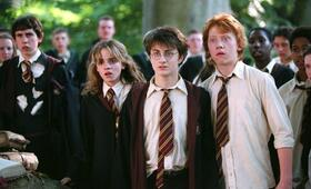 Harry Potter und der Gefangene von Askaban mit Daniel Radcliffe, Rupert Grint und Matthew Lewis - Bild 19