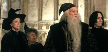 Harry Potter und die Kammer des Schreckens: Dumbledore und seine Lehrer