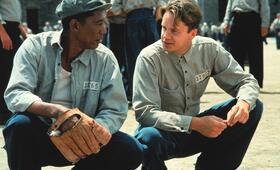 Die Verurteilten mit Morgan Freeman und Tim Robbins - Bild 188