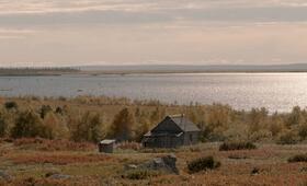 Die Hüter der Tundra - Bild 11