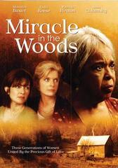 Miracle in the Woods - Wunden der Vergangenheit