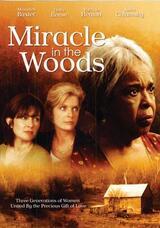 Miracle in the Woods - Wunden der Vergangenheit - Poster