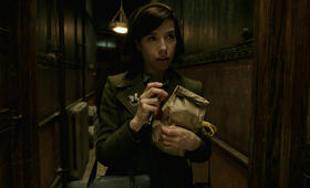 The Shape of Water mit Sally Hawkins - Bild 13