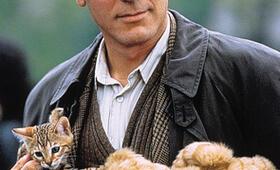 George Clooney - Bild 154