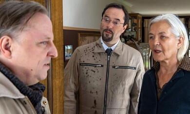 Tatort: Das Wunder von Wolbeck - Bild 6