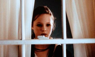 American Beauty mit Thora Birch - Bild 3