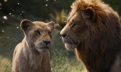 Der König der Löwen - Bild 3
