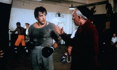 Rocky mit Sylvester Stallone - Bild 11