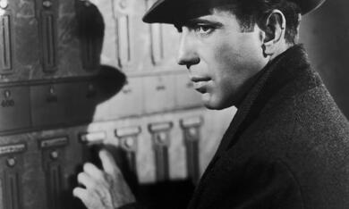 Die Spur des Falken mit Humphrey Bogart - Bild 1