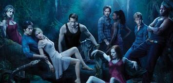 Bild zu:  True Blood
