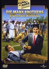 Marx Brothers - Blühender Blödsinn - Poster
