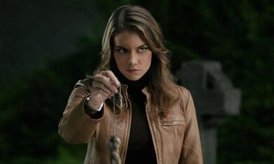 Staffel 3 mit Lauren Cohan - Bild 4