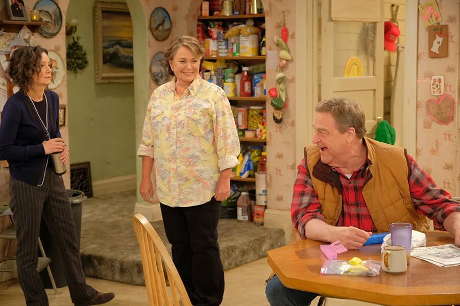 Roseanne Revival, Roseanne Revival - Staffel 1 mit John Goodman, Sara Gilbert und Roseanne Barr