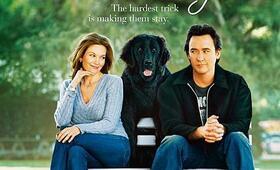 Herz Sucht Mann Hund Mit Dvd Mit Frau