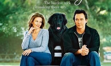 Frau mit Hund sucht Mann mit Herz - Bild 2