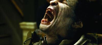 Benicio Del Toro als Wolfman