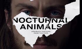 Nocturnal Animals mit Aaron Taylor-Johnson - Bild 23