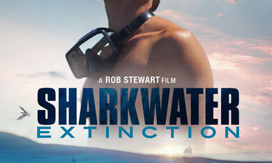 Sharkwater Extinction - Bild 4