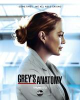 Grey's Anatomy - Staffel 17 - Poster