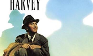 Mein Freund Harvey - Bild 1