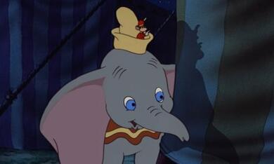 Dumbo, der fliegende Elefant - Bild 5